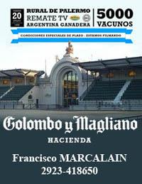 Colombo y Colombo