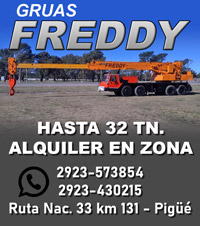 Grúas Freddy 2