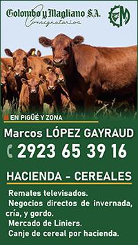Marcos López Gayraud 01